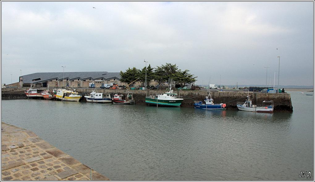 [Activité hors Marine des ports] LE CROISIC Port, Traict, Côte Sauvage... - Page 2 101123083734743897179413