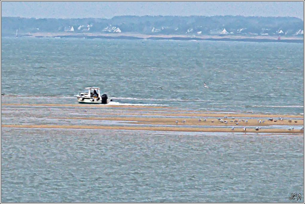 [Activité hors Marine des ports] LE CROISIC Port, Traict, Côte Sauvage... - Page 2 101123083735743897179415