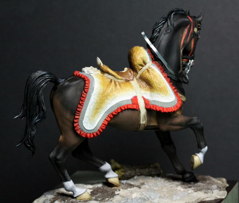 Officier de hussards - Pegaso 75mm 101127082723590207199240