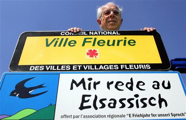De Elzas : de andere Franse regio met een Germaanse cultuur  101129013145970737213682