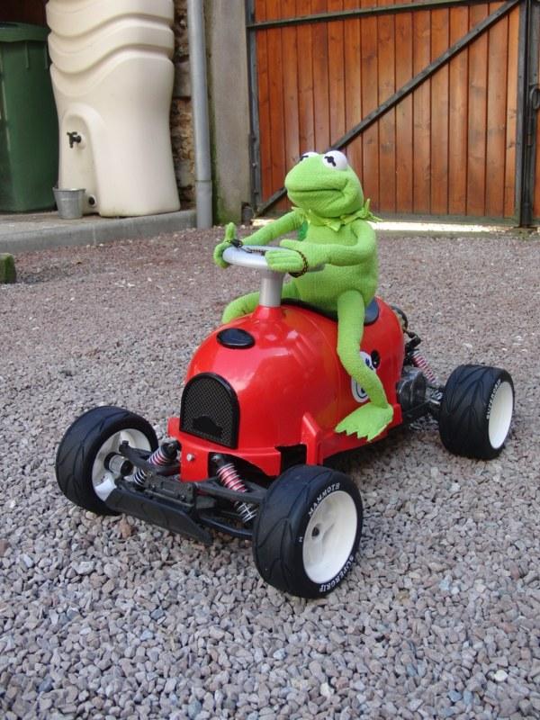 Mon Marder Muppet  101129103304672457217076