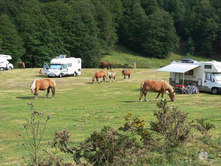 Vacances au Pays Basque été 2010 - Page 2 1012051200051209497253258