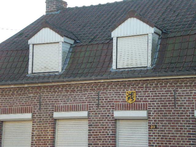 De Vlaamse vlag op onze huizen hangen 110109080946970737445856