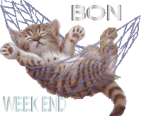 Bon weekend à tous! 1102050950111140117588668