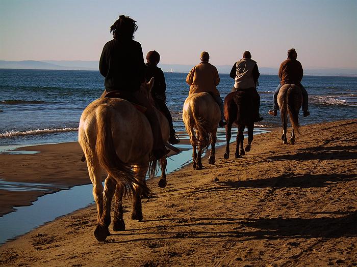"""Défi Post Traitement XVIII : """"Promenade sur la plage"""" 110226011530814597716219"""