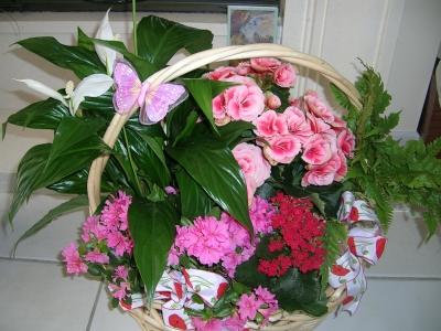 photo anniversaire fete meres plus beau bouquet fleurs que. Black Bedroom Furniture Sets. Home Design Ideas