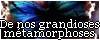 Boutons et Bannières pour nous lier 1103130608091017567811577