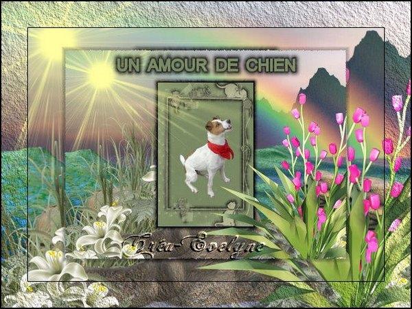 Un amour de chat 1104030956541045397933540