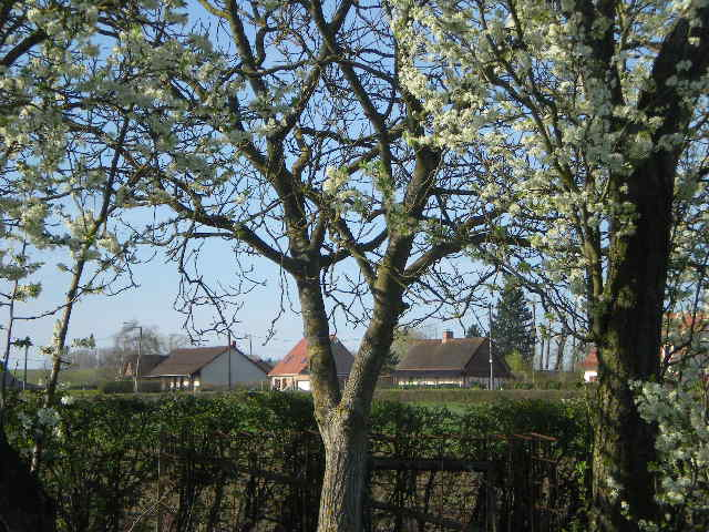 Nieuwe traditionele huizen in Frans-Vlaanderen 110406094210970737950644