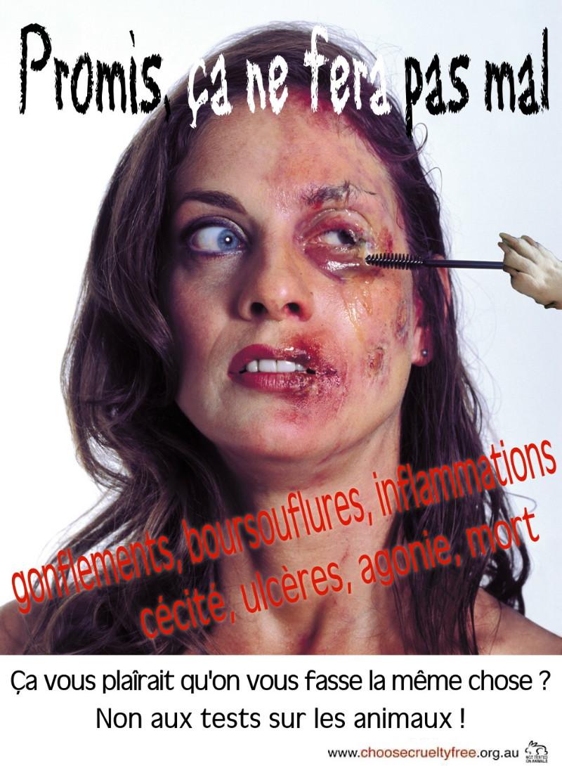 """""""Marche européenne contre la vivisection"""" 23/04/2011 Paris 1104230727141239648042609"""