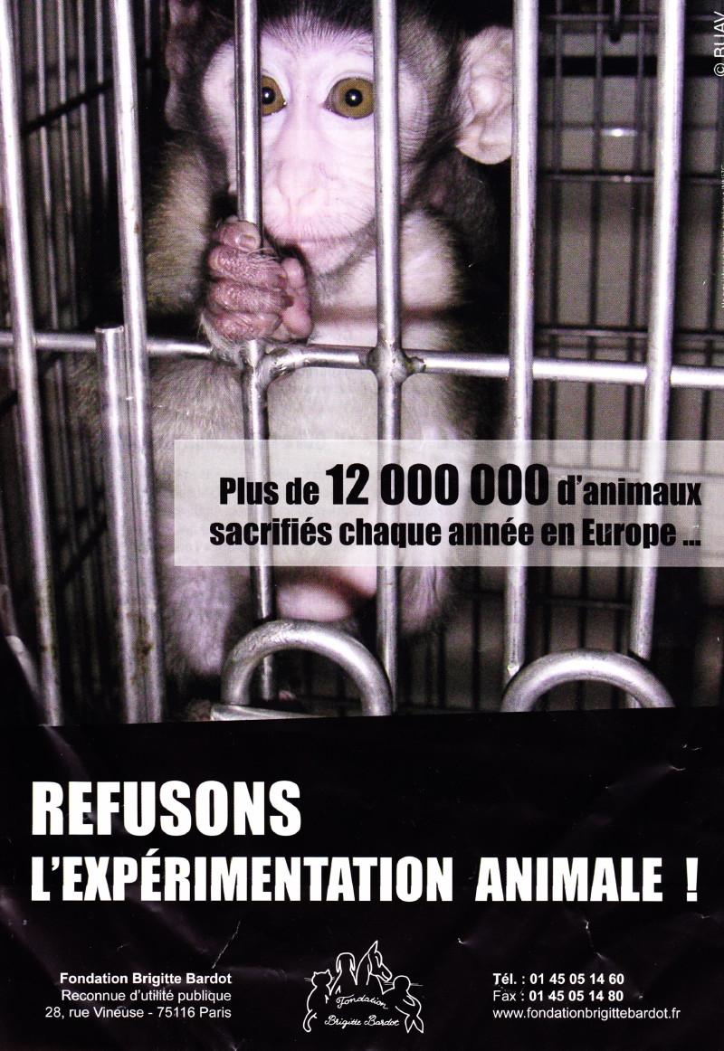 """""""Marche européenne contre la vivisection"""" 23/04/2011 Paris 1104230727171239648042613"""