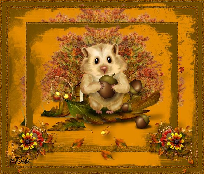 Tag les couleurs de l'automne - Page 2 110427082129195538065801