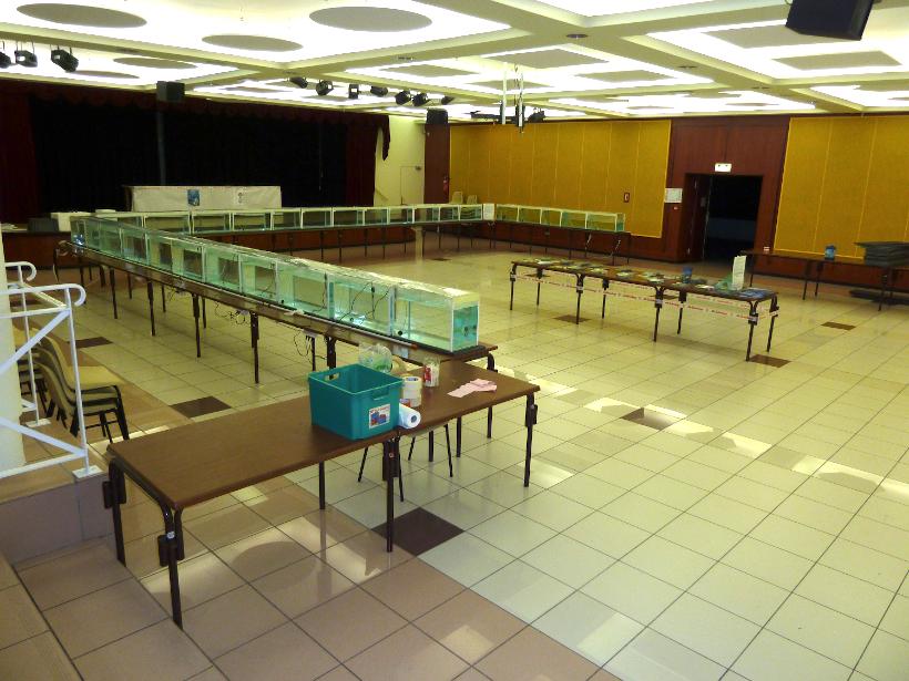 Bourse de Villeneuve les Beziers 1er mai 2011 1104300336031071758080763