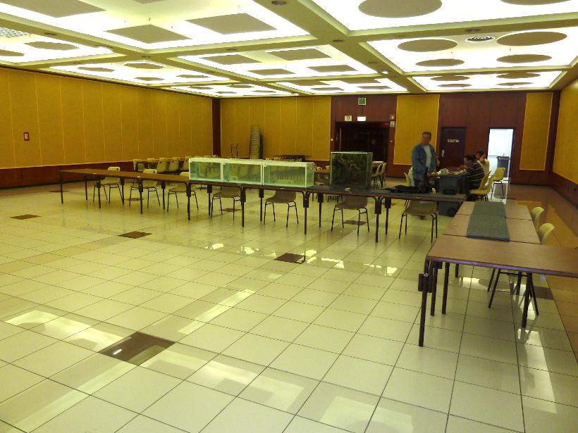 Bourse de Villeneuve les Beziers 1er mai 2011 1104300336031071758080764