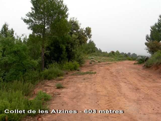 Collet de les Tres Alzines - ES-B- 603 mètres