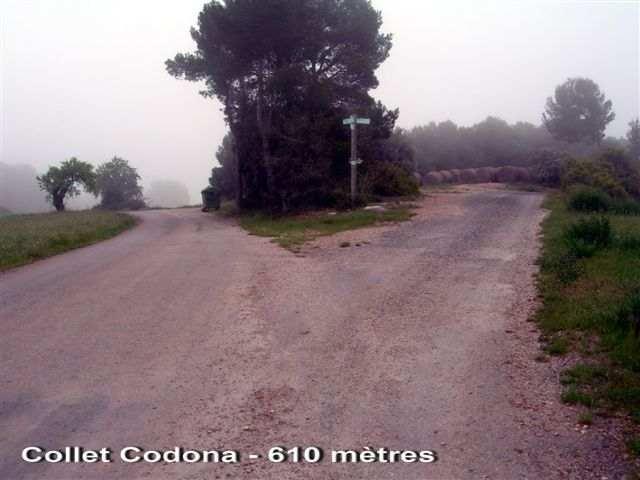 Collet Codina - ES-B- 610b