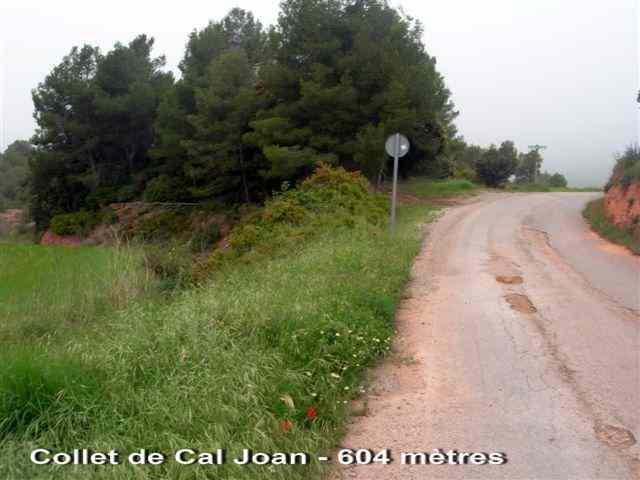 Collet de Cal Joan - ES-B- 604 mètres