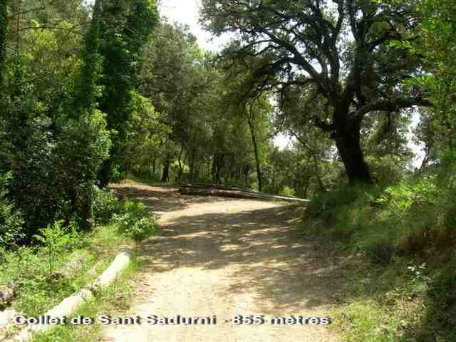 Collet de Sant Sadurni - ES-B-0854