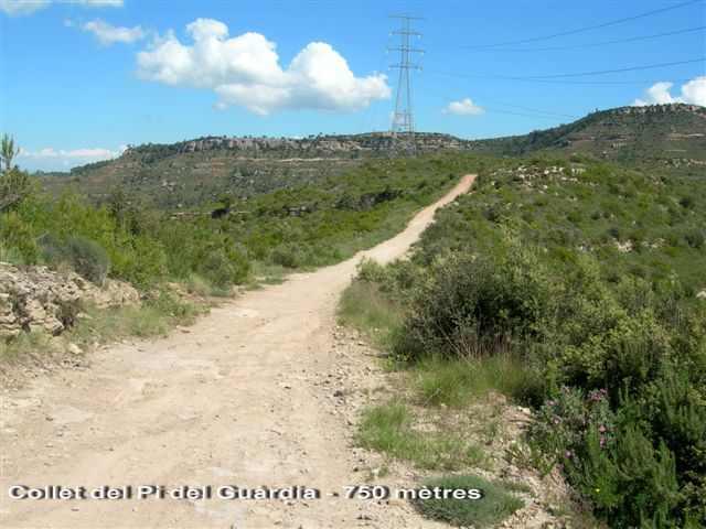 Coll del Pi del Guàrdia - ES-B-0750f