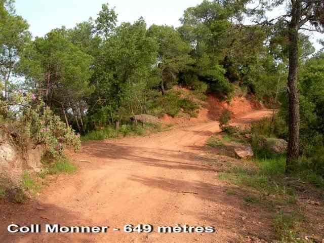 Coll Monner - ES-B-0625