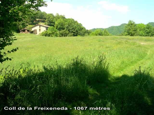 Coll de la Freixeneda - ES-B-1067
