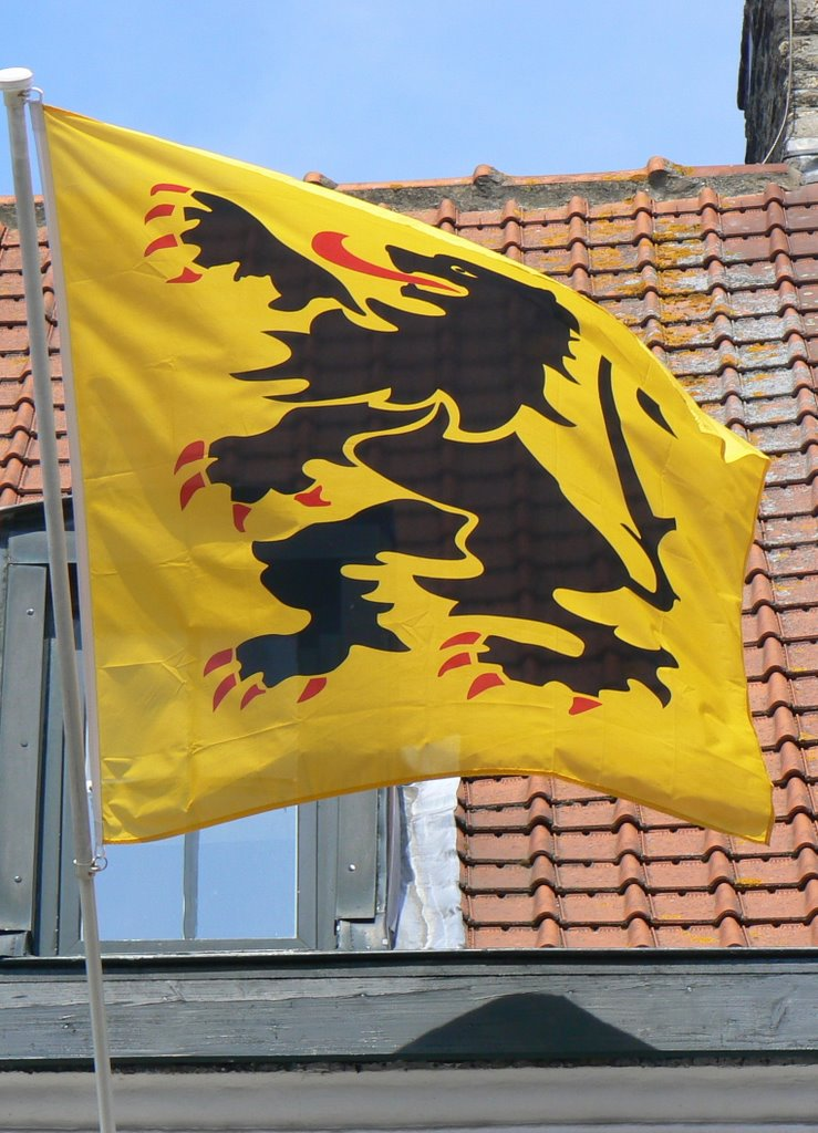 De Vlaamse vlag op onze huizen hangen 110531065839970738246438