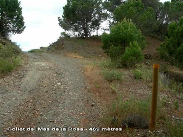 Collet del Mas de la Rosa - ES-T-0430c
