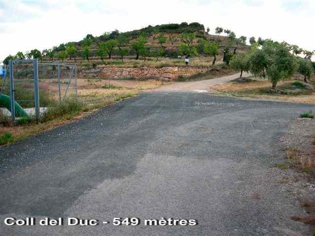 Coll del Duc - ES-L- 549 mètres