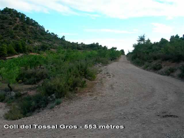 Coll del Tossal Gros - ES-L- 553 mètres