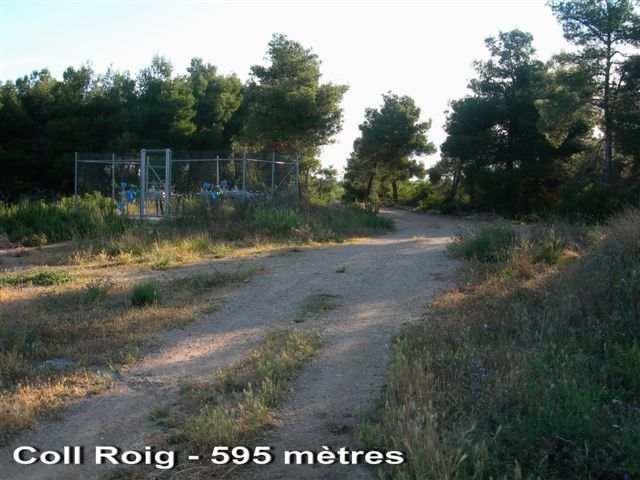 Coll Roig - ES-L-0595c