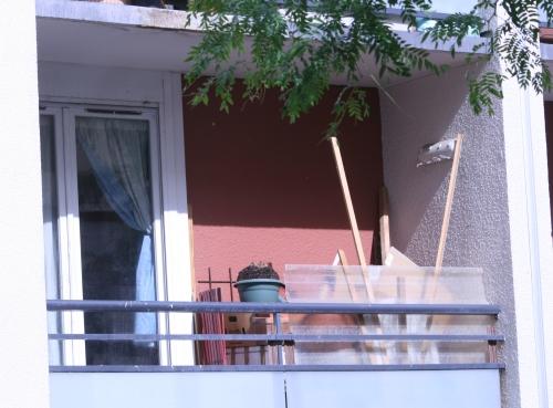 http://nsm05.casimages.com/img/2011/06/13/110613051525390118316465.jpg