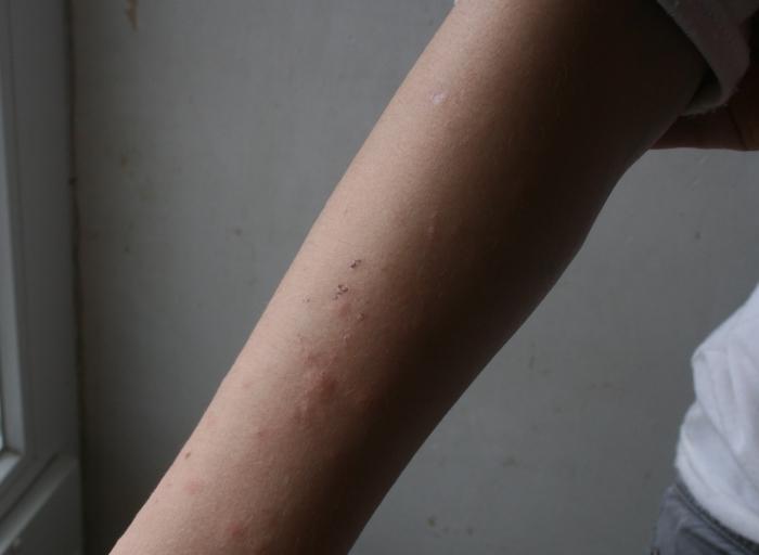 http://nsm05.casimages.com/img/2011/06/21/110621075608390118360415.jpg
