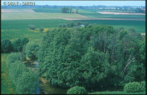 Castrale mottes van Frans-Vlaanderen 110624103426970738373987