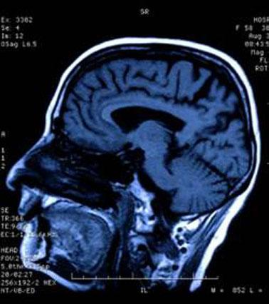 http://nsm05.casimages.com/img/2011/06/25/1106251025101190638381918.jpg