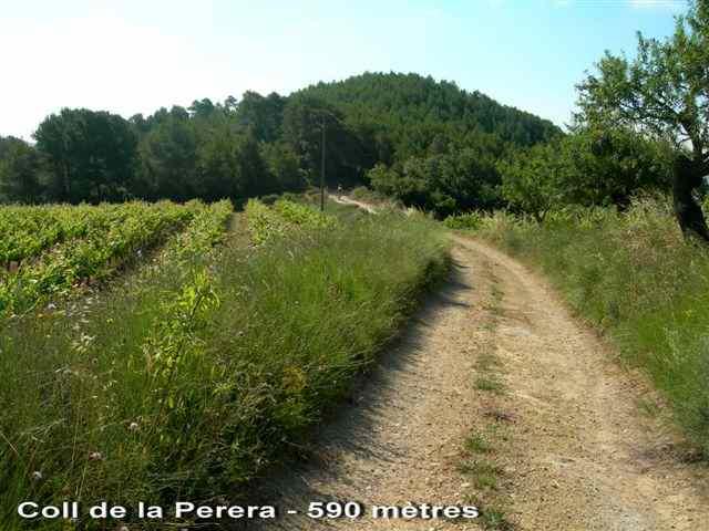 Coll de la Perera - ES-T- 590 mètres