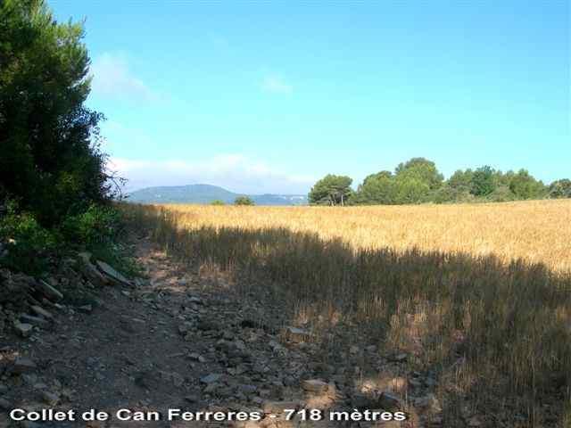 Collet de Can Ferreres - ES-B- 718 mètres