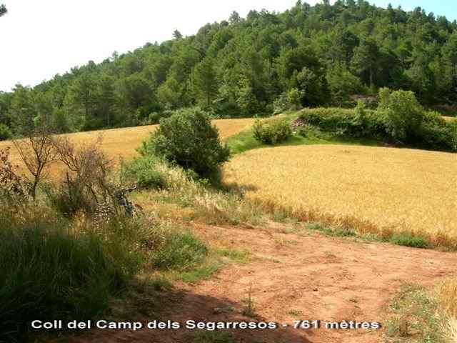 Coll del Camp dels Segarresos - ES-B- 768 mètres