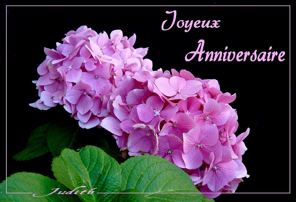 Joyeux Anniversaire Uranie Sophie Le Coin Détente