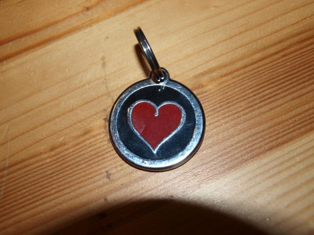 Médaille de vos chiens: avis - achats 1107101006261073068452993