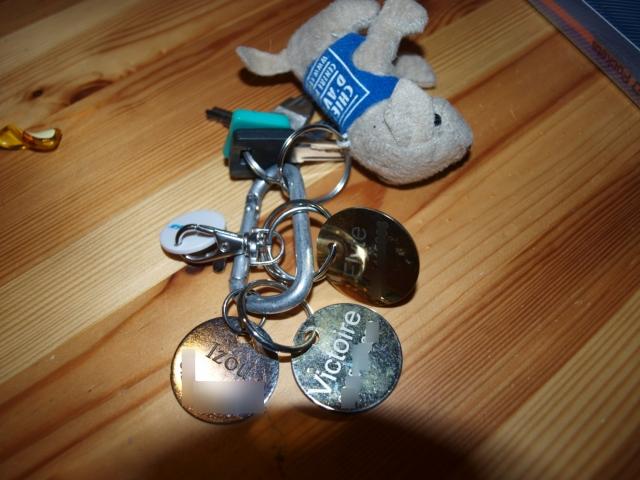 Médaille de vos chiens: avis - achats 1107101021271073068453061