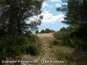 Collado Paciencia - ES-V- 1188 mètres