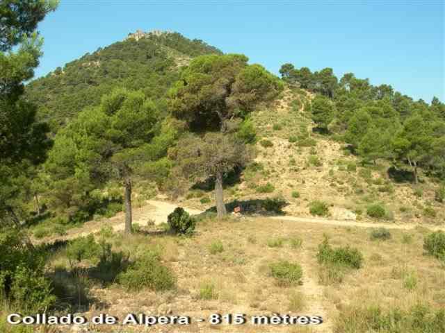 Collado de Alpera - ES-V- 815 mètres