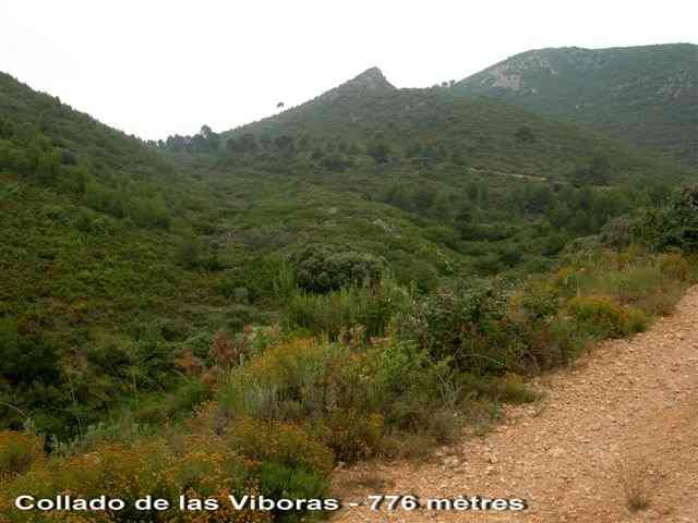 Collado de las Viboras - ES-V- 776 mètres