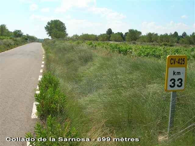 Collado de la Sarnosa - ES-V-0697