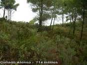 Collado Alonso - ES-V- 714 mètres
