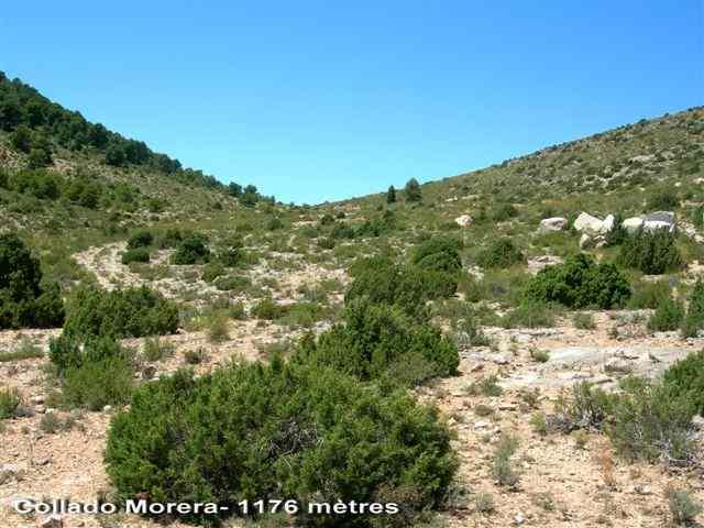 Collado Morera - ES-GR- 1176 mètres