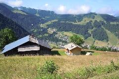 11_18_Alpes_2 - Alpes_2011_07_08_114a