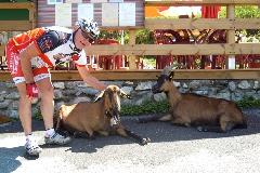 11_18_Alpes_2 - Alpes_2011_07_08_157