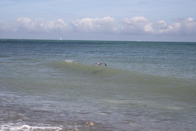 Vacances à Veulette-sur-Mer (76) avec Victoire et Elyte 1108100950541073068570655