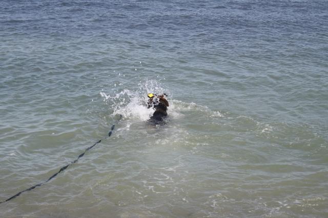 Vacances à Veulette-sur-Mer (76) avec Victoire et Elyte 1108101003431073068570747